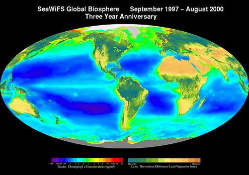 Seawifs biosphere