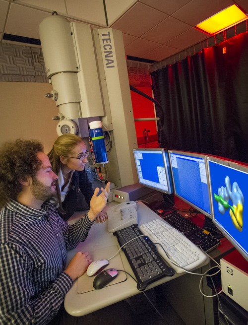 Michael Cianfrocco and Eva Nogales used single-particle cryo-electron microscopy to learn how the TFIID transcription factor helps regulate of gene expression, a process critical to the growth, development, health and survival of all organisms. (Photo by Roy Kaltschmidt)