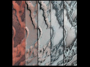The High Resolution Imaging Science Experiment (HiRISE) camera on NASA's Mars Reconnaissance Orbiter snapped this series of pictures of sand dunes in the north polar region of Mars. The area covered in each of the five panels is about 0.8 mile (1.3 kilometers) wide. Image Credit: NASA/JPL-Caltech/Univ. of Arizona (Click image to enlarge)