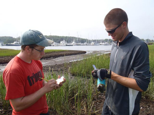 Field research in the great outdoors. Tyler Coverdale, right, and fellow student Eric Axelman gather field data on Cape Cod. Some ecological problems on the Cape have roots in the 1930s, which analysis of historical photographs discovered. Image credit: Brown University