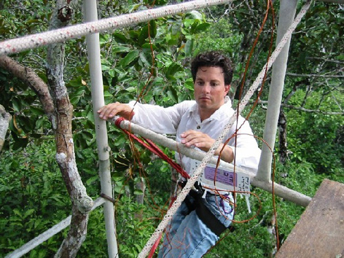 Berkeley Lab scientist Jeffrey Chambers in the Amazon forest instrumenting the upper canopy from a 30-meter tower with micro-meteorological sensors. (Photos courtesy Jeffrey Chambers)