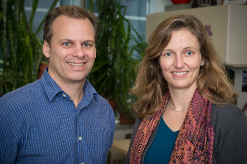 Robert Britton, associate professor in the Department of Microbiology and Molecular Genetics, and Laura McCabe, professor in the departments of Physiology and Radiology. Photo by G.L. Kohuth.