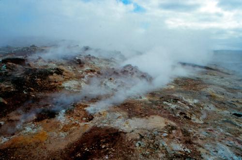 A volcanic area near Reykjavik, Iceland, where Galdieria sulphuraria has been found. Image credit: Christine Oesterhelt