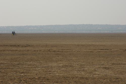 Arid landscape in the district of Kutch, northwest India, where malaria epidemics are under the influence of monsoon rains, and regional rainfall is associated, in turn, with sea-surface temperatures in the tropical South Atlantic Ocean. Photo by Mercedes Pascual.