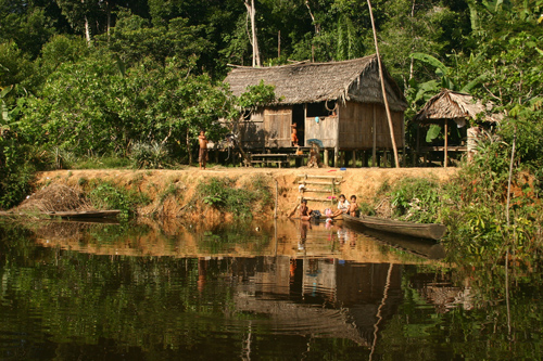 A forest-dependent household in the Brazilian Amazon. Image credit: Pete Newton