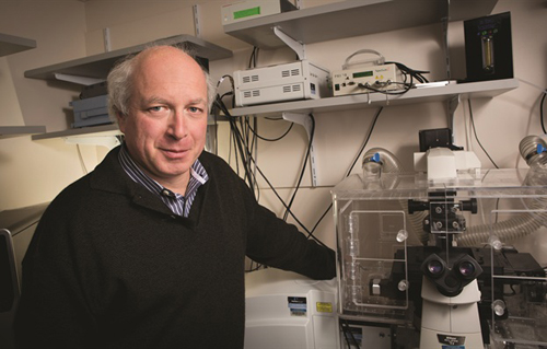 Michael Simons, a leading researcher on the role of arteriogenesis in cardiovascular diseases, directs the Yale Cardiovascular Research Center (YCVRC). The YCVRC's collaborative spirit and unique scientific climate has attracted top cardiovascular scientists to the School of Medicine and has opened up new research directions and avenues of funding. (Photo by Harold Shapiro)