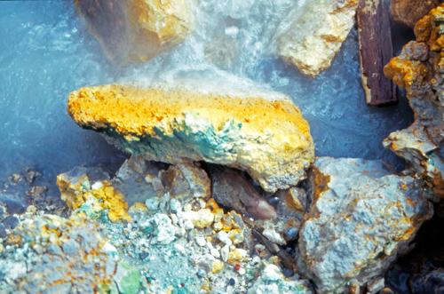 Rock in an Icelandic hot spring near Reykjavik with sulfur and Galdieria sulphuraria. Image credit: Christine Oesterhelt