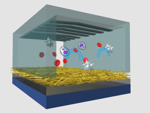 NanoVelcro chip. Cartoon representation of the working mechanism of the polymer-nanofiber NanoVelcro chip. Image credit: University of California