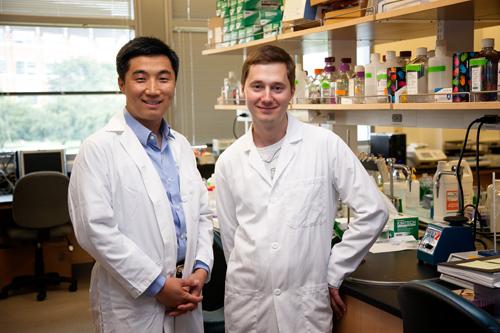 Xiaohu Gao, left, and Pavel Zrazhevskiy in a UW bioengineering lab. Image credit: Scott Manthey