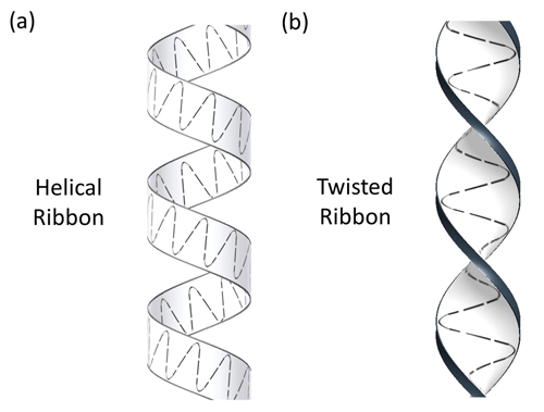 Ozcan-Chiral Ribbon Types. Sperm have been observed swimming in two ribbon patterns, one a helical ribbon like the stripe around a barber's pole, the other a twisted ribbon pattern like that of a corkscrew. (Image courtesy of UCLA Engineering and Scientific Reports)