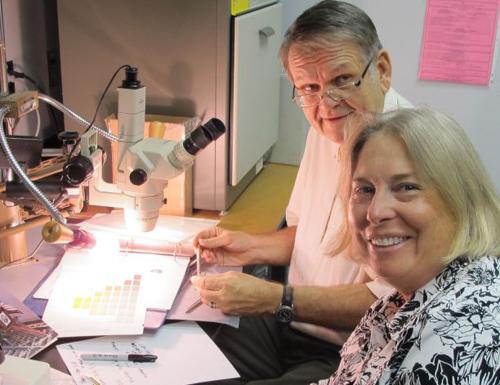 Wayne Wesolowski and Nancy Odegaard examining paint flakes. (Image credit: Arizona State Museum)