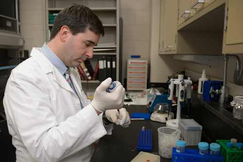 MSU veterinary ophthalmologist András Komáromy's research involves new gene therapy techniques that could help treat disorders that cause blindness in both dogs and humans. Photo by G.L. Kohuth.