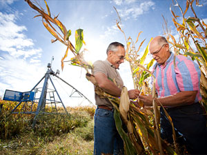 Farmer John Dosdall, right, and Crop Consultant Paul Groneberg. Crop farmers learn about the latest University research from ag pros trained by Extension. Image credit: University of Minnesota