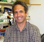 Dr. Michael Teitell, professor of pathology and pediatrics. Image courtesy of UCLA