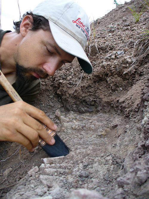 Paleontologist Christian Sidor excavates a fossil in Tanzania. Image credit: Linda Tsuji
