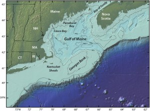 An elevated area of the sea floor between Cape Cod and Nova Scotia, Georges Bank is one of the best fishing grounds on Earth. For decades scientists speculated the blooms on Georges Bank were fueled by coastal blooms in the Gulf of Maine, but new research suggests the population of toxin-producing algae on Georges Bank occupies a distinct niche. Illustration by Jack Cook, Woods Hole Oceanographic Institution (Click image to enlarge)