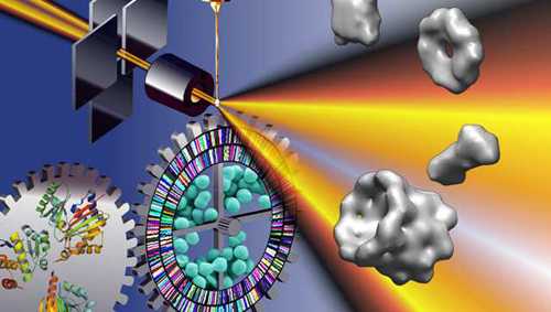 Small angle scattering (SAS) with X-rays (pictured here) or neutrons is the only imaging technique that provides a complete snapshot of the thermodynamic state of macromolecules in a single image. Image credit: Berkeley Lab