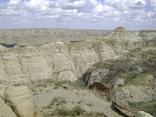 Figure 4. View of the badlands of the Milk River Valley, southern Alberta, from the quarry of one of the specimens described in the study. Photo by C. Brown.