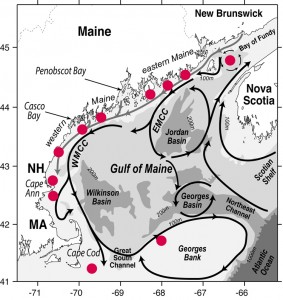 Proposed Gulf of Maine deployment sites for ESP instruments in a regional network configuration. This scenario will require more instruments than are currently in hand. Image courtesy of Don Anderson Lab, Woods Hole Oceanographic Institution (Click image to enlarge)