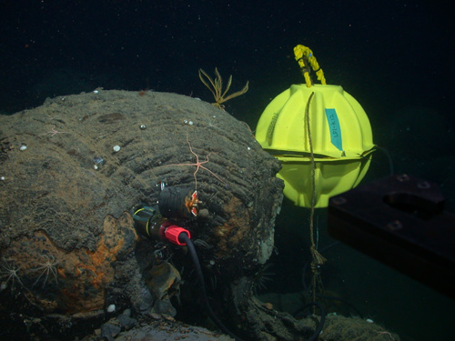A seismometer inserted into a hole drilled in seafloor lava. Eight of these instruments were installed at an ocean spreading-center volcano 150 miles off Vancouver Island. A data recording device is enclosed in the yellow sphere. In three years of operation the network detected nearly 40,000 small earthquakes, and hundreds of thousands of fin-whale calls. Image credit: John Delaney and Deborah Kelley, UW (taken with remotely operated vehicle Jason)