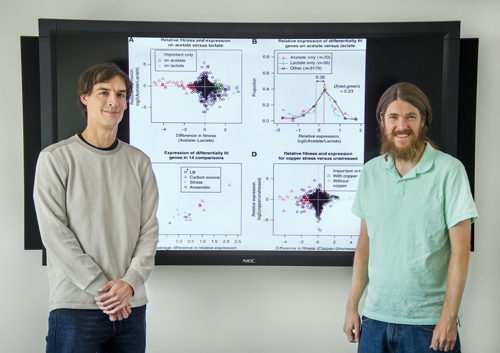 Adam Deutschbauer and Morgan Price were key contributors to a study that challenges the view that in response to environmental changes, bacterial genes boost production of needed proteins and decrease production of those that aren't. (Photo by Roy Kaltschmidt)