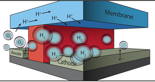 In this microfluidic test-bed, a chemically inert wall (red) separates anode from cathode and the channels in which O2 and H2 are generated by splitting water molecules. Protons (H+) are conducted from one channel to the other via a membrane cap (Nafion®) that also prevents the intermixing of the O2 and H2 product streams. Image credit: Berkeley Lab