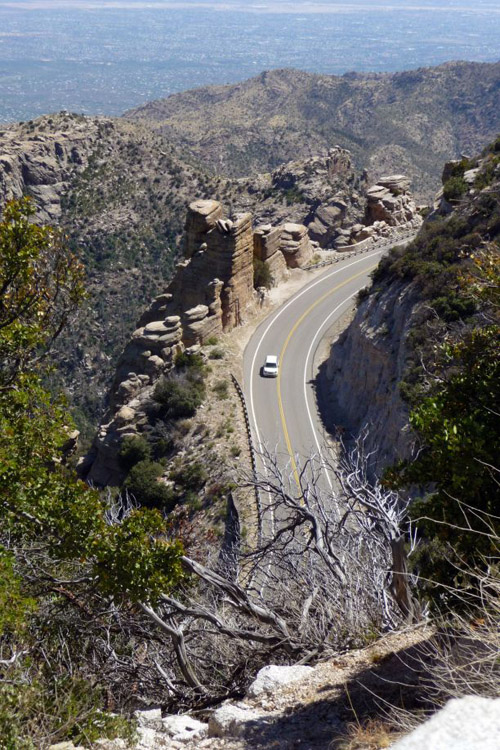 The book includes a guide for a drive up Mount Lemmon Highway, explaining the natural features at different stops. (Photo by: Richard Brusca)