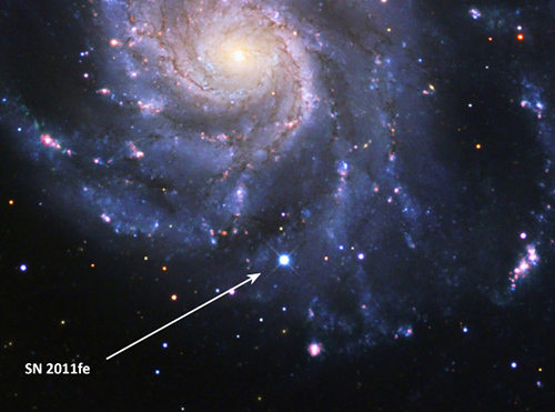 Supernova 2011fe was discovered just hours after it exploded in the Big Dipper. Studies by the Nearby Supernova Factory of its spectrum as it evolved over time have produced a benchmark atlas of data by which to measure all future Type Ia's. (Image credit: B. J. Fulton, Las Cumbres Observatory Global Telescope Network.)
