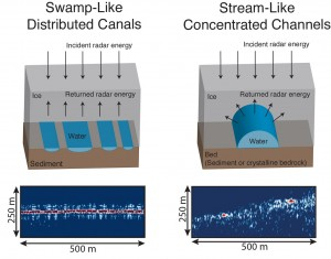 Cartoon representations (above) and radar images (below) of the distinct swamp-like and stream-like water systems observed beneath Thwaites Glacier, West Antarctica. Image credit: University of Texas Institute for Geophysics (click image to enlarge)