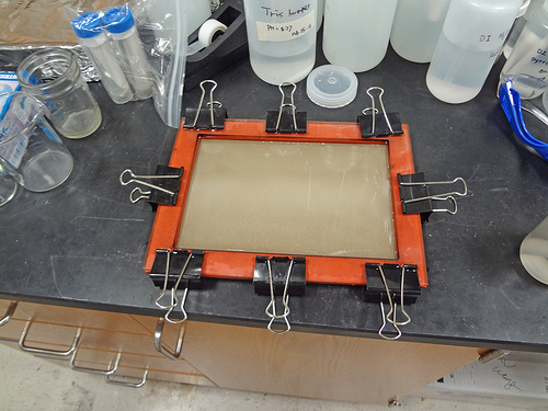 A flat-sheet ultrafiltration membrane after being coated with the anti-fouling agent, polydopamine. Image credit: The University of Texas at Austin