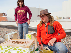 Jody Gerdts (foreground) and Becky Masterman promote bee health through training, education, and partnerships like this one with the Weisman Art Museum. ~Photos by Dave Hansen.