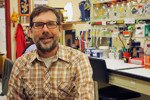 Matt Cordes, a UA associate professor in the department of chemistry and biochemistry, led the team that discovered that the venom of some spiders in the genus Loxosceles causes a different reaction in the body than previously thought. (Photo by: Beatriz Verdugo/UANews)