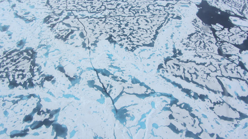 An aerial photo taken July 16 shows extensive meltwater pools off the Alaskan coast. Image credit: A. Schweiger, UW
