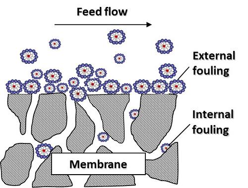 Membrane fouling diagram. Image credit: The University of Texas at Austin