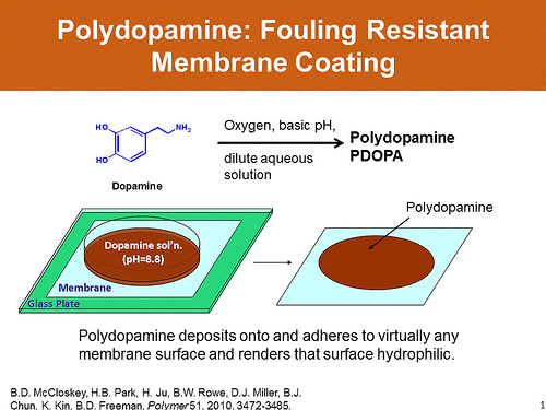 Polydopamine fouling-resistant membrane coating graphic. Image credit: The University of Texas at Austin