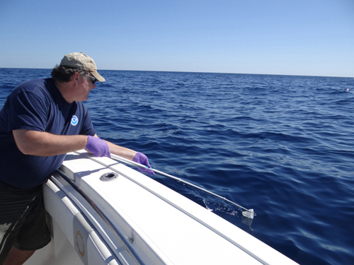 During an expedition in October 2012, WHOI research specialist Bob Nelson sampled the sheens using a telescoping rod to pass a Teflon screen through the top few inches of the sea surface. (Photo by Chris Reddy, Woods Hole Oceanographic Institution)