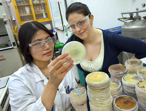 Mary Singer (right) mentoring a student in 2010. (Photos by Roy Kaltschmidt/Berkeley Lab)