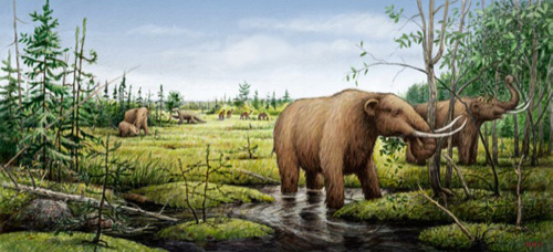An artist's rendition of mastodons, camels and a ground sloth before the environmental changes of the Younger Dryas led to their extinction. Illustration by Barry Roal Carlsen, University of Wisconsin