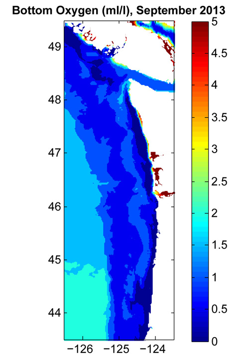 The tool forecast low oxygen at the ocean bottom in September. Image credit: S. Siedlecki, JISAO