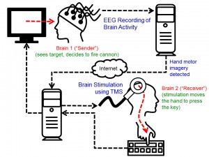 """The cycle of the experiment. Brain signals from the """"Sender"""" are recorded. When the computer detects imagined hand movements, a """"fire"""" command is transmitted over the Internet to the TMS machine, which causes an upward movement of the right hand of the """"Receiver."""" This usually results in the """"fire"""" key being hit. Image credit: University of Washington (Click image to enlarge)"""