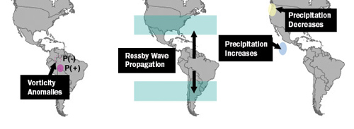 Research suggests that deforestation will likely produce a weather cycle over the Amazon consisting of abnormally dry air in the sun-scorched northern Amazon around the equator weighted by wetter air in the cooler south (left). The Princeton-led researchers found that the Amazon pattern would be subject to meandering high-altitude winds known as Rossby waves that move east or west across the planet (center). The Rossby waves would move the dry end of the Amazon pattern directly over the western United States from December to February, while the pattern's rainy portion would be over the Pacific Ocean south of Mexico (right). (Image by David Medvigy, Department of Geosciences)