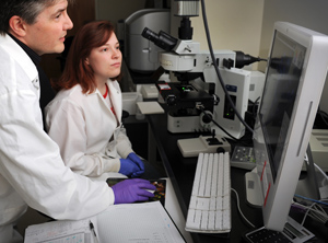 The database can be used to track information about toxic effects of therapeutic drugs. Photo credit: NC State University