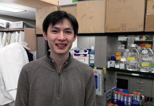 "Lead author Hua Bai. ""For now this research is in fruit flies, but we think it can be extended to human aging biology."" Image credit: David Orenstein/Brown University"