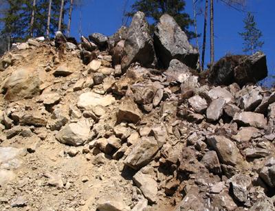 Bergsturzschutt aus Granitgneisen des Ötztal-Kristallins im Bergsturz von Tumpen im Ötztal, Tirol. (Image credit:  Christoph Prager)