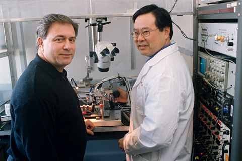 Donald Simone (l.) and colleague Darryl Hamamoto prepare an apparatus for a spinal cord electrophysiology experiment. Image credit: University of Minnesota