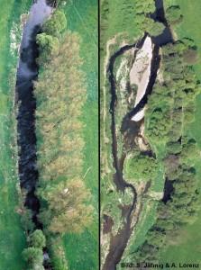 Vorher (links) und nachher (rechts) – ein renaturierter Flußabschnitt. Image credit: ©S. Jähnig/A. Lorenz (Click image to enlarge)