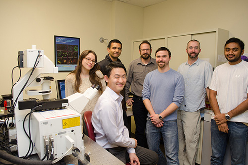 The maize research team includes Jeff Caplan (front) and (from left) Katie Minker, Felix Francis, Randy Wisser, Scott Jacobs, Stephen Rhein and Abhishek Kolagunda. Photo by Danielle Quigley
