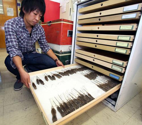 Taichi Suzuki in lab. Image courtesy of Arizona Daily Star