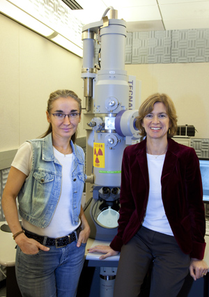 Eva Nogales (left) and Jennifer Doudna led a study that produced the first detailed look at the 3D structure of the Cas9 enzyme and how it partners with guide RNA. (Photo by Roy Kaltschmidt)