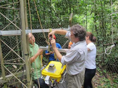 USGS collaborator Scott Saleska (University of Arizona) works with research team members to prepare a remote sensing instrument for installation near the top of a 213-foot (65-meter) tower at the Amazon forest study site near Santarém, Brazil.  Data from the sensor system are being used by Saleska, USGS Geographer Dennis Dye and their U.S., Brazilian and Australian collaborators to improve understanding of how photosynthesis in tropical forests responds to seasonal variations in climate. Tapajós National Forest, near Santarém, Pará, Brazil. Photo credit: Dennis Dye, USGS
